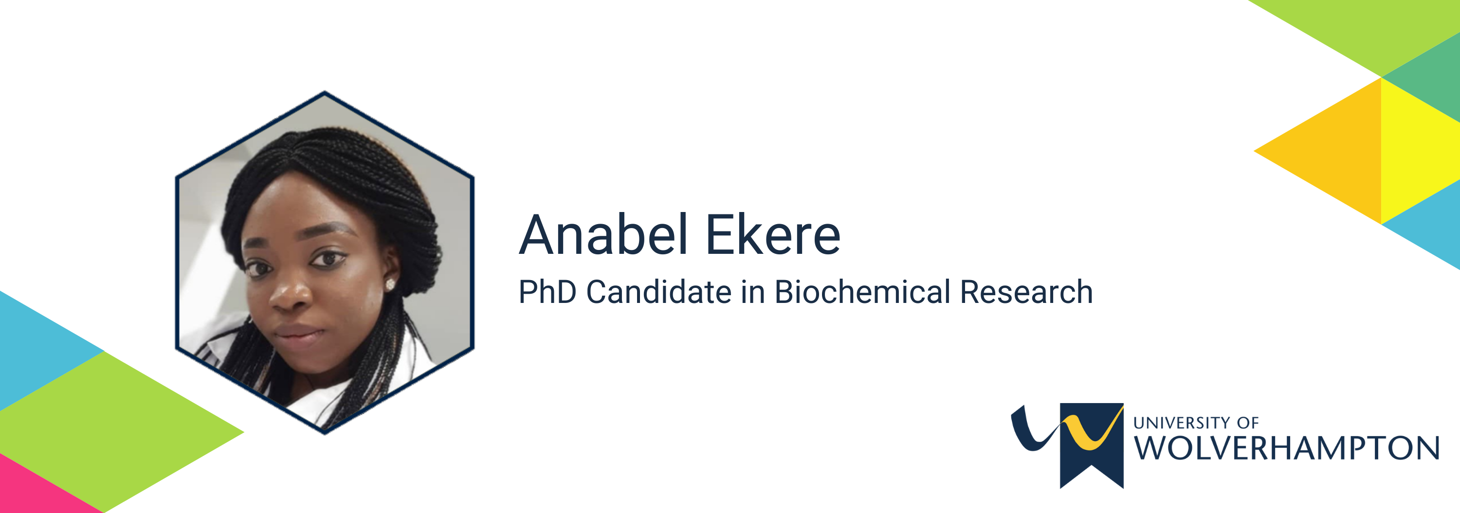 profile page banner  anabel