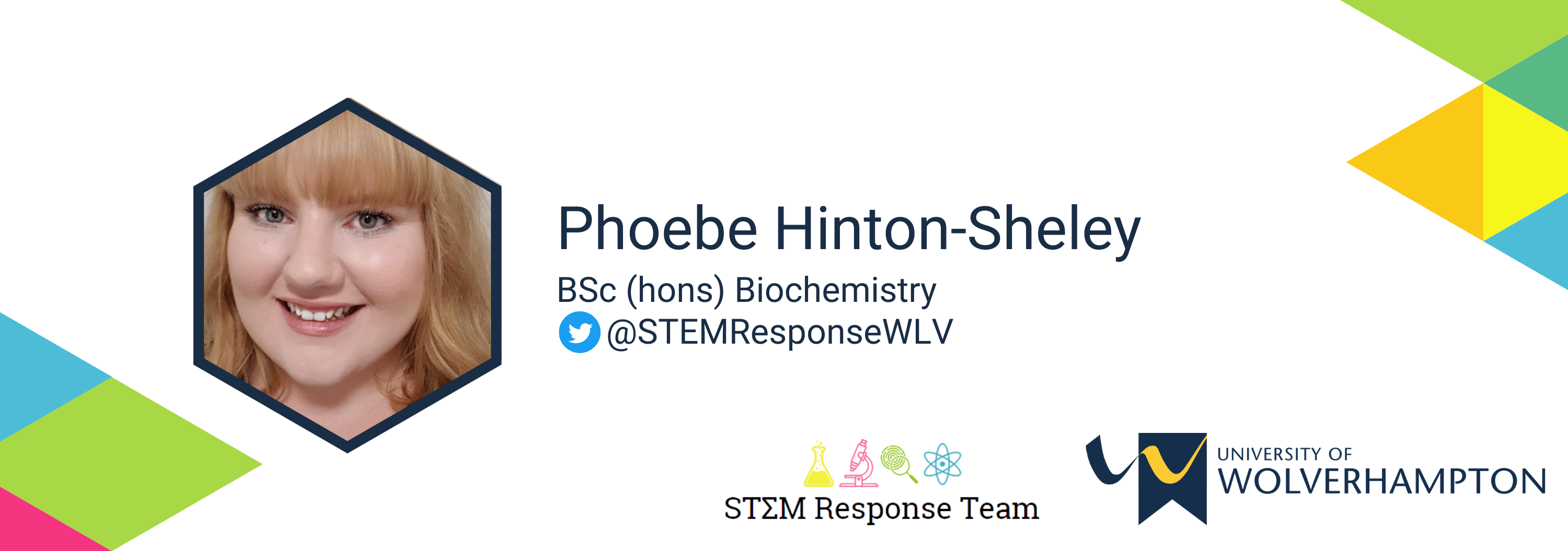 profile page banner  phoebe