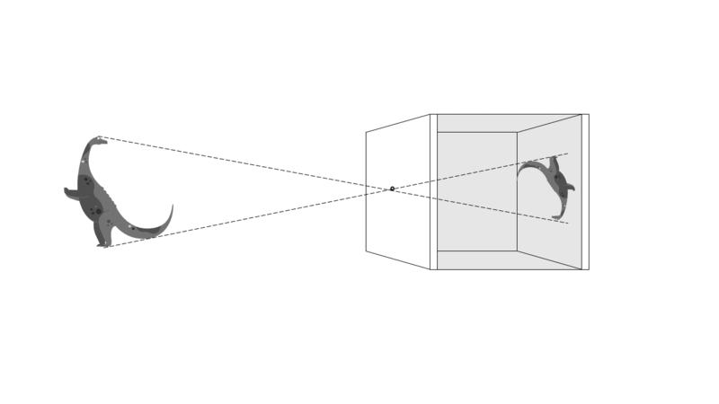 camera obscura picture