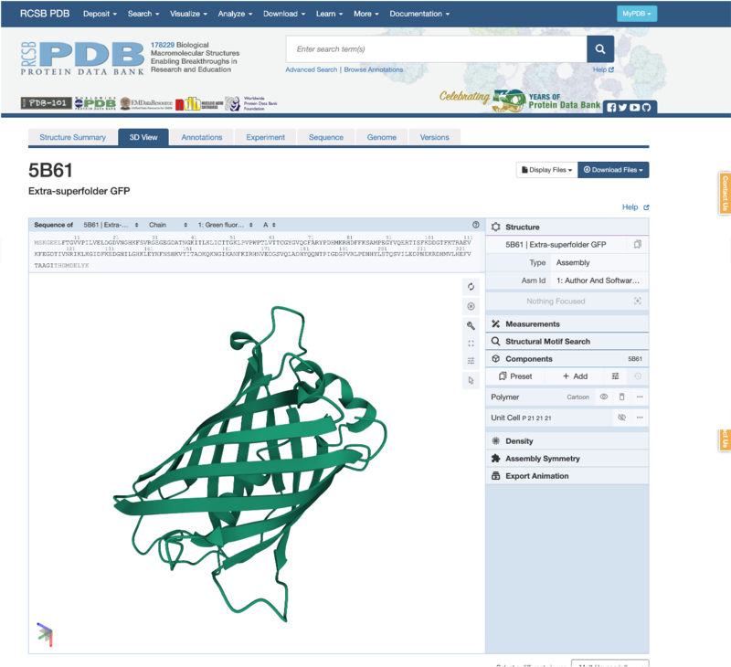Image of the 3D Viewer showing the GFP structure