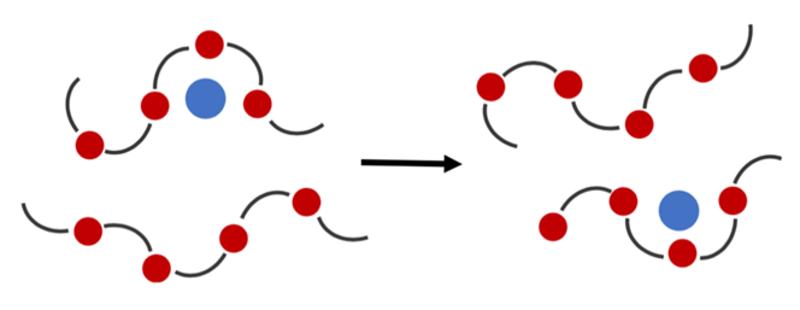 Li+ transfer via polymers diagram