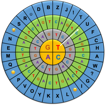 Nucleobase wheel with four concentric circles for encoding a message. The three inner circles have nucleobases. Each three letter code encodes for a letter of the alphabet or other symbol.